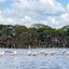 Lake Naivasha Safari
