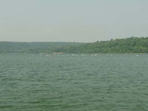 Lago Saltonstall