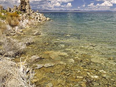 Lakeside Of Mono Lake