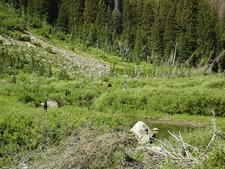 Lake Solitude Trailviews - Grand Tetons - Wyoming - USA