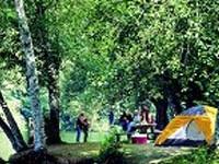 Sylvia Lago Parque Estadual