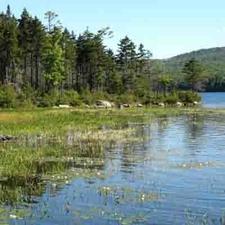 Lake Tarleton State Park