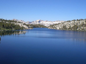 Virginia Lago