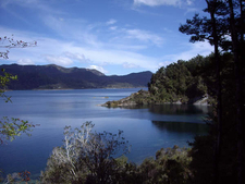 Lake Waikaremoana Scenic Views - Te Urewera