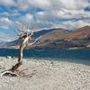 Lake Wanaka - Central Otago NZ South Island
