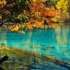 Lake Within Jiuzhaigou Park