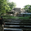 Lamanai Ruins Stairway - Orange Walk District - Belize