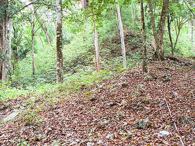 La Milpa - Orange Walk District - Belize