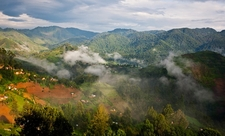 Landscape @ Bwindi Impenetrable National Park UG