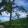 Landscape Of Manipur