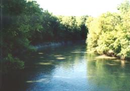 El río de la anguila