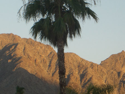The Santa Rosa Mountains At Dusk