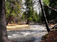 Lava Creek Trail