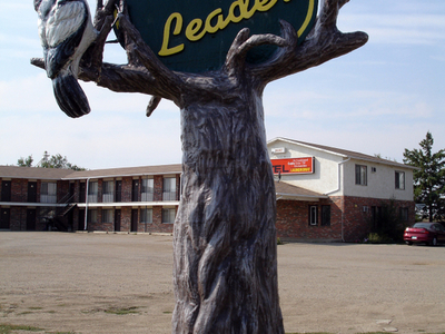 Town Of Leader
