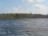 Lee Hall Reservoir