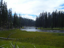 Lewis River Channel / Shoshone Lake Loop Trail
