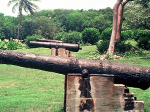 Lignumvitae Key State Park Botánico