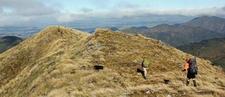 Limestone Roadend To Leon Kinvig Hut Track - North Island - New Zealand