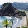 Lion Rock - Piha - Beach & Town View NZ