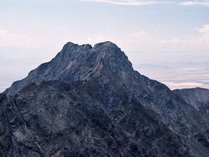 Poco Pico Oso