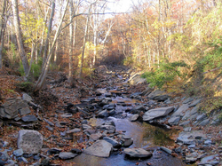 Little Falls Branch
