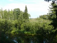 Little River Gratiot