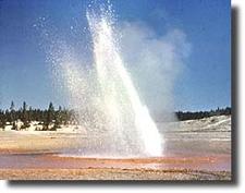 Little Whirligig Geyser At Yellowstone - USA