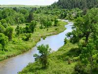 Little River White