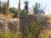 Living Desert Zoo State Park