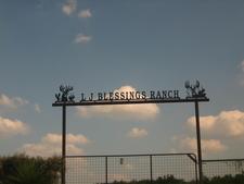 L . J . Blessings Ranch Near Freer