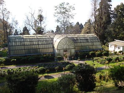 Lloyd's Botanical Garden