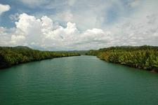 Loboc River View