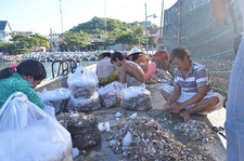 Local Farmers Do Their Work With Seafood On Binh Hung Island