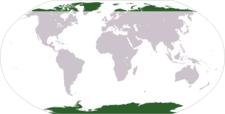 Location Of The Polar Regions