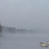 Loch Insh In The Mist