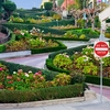 Lombard Street In San Francisco CA