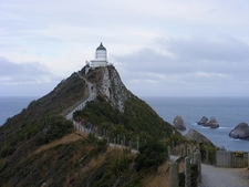 Long Road To Nugget Point Lighthouse - Otago NZ