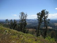 Look Southeast From Bald Peak - Hillsboro OR