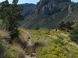 Trail Lost Mine