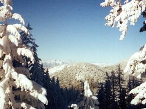 Lupas de la lente Ski Bowl