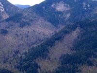 Bajo Wolfjaw Montaña