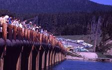 Lower Yellowstone River - Angling - Yellowstone - Wyoming - USA