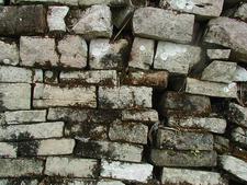 Lubaantun Wall - Toledo District - Belize