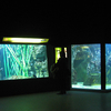 Aquarium du Grand Lyon