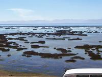 Lake Junín