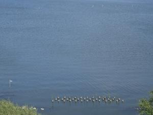 Lago Kasumigaura