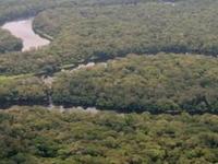 Parque Nacional de Salonga
