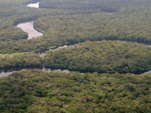 Parque Nacional Salonga