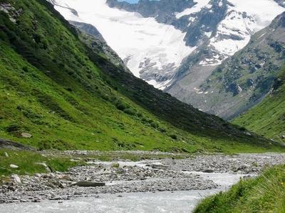 Rheinwaldhorn Seen From South Of Vals