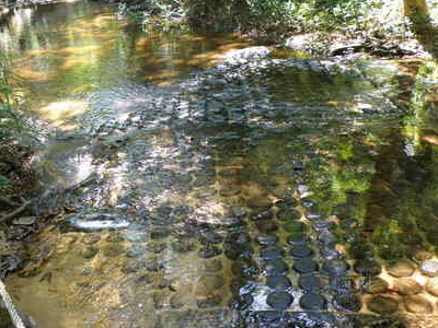 1000 Lingas In The Rocky Bed